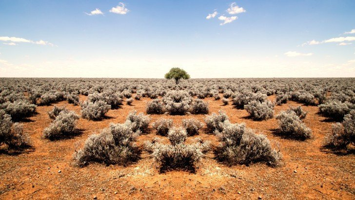 オーストラリアは霊的にとっても綺麗な土地、霊感ある奴は移住せよ!