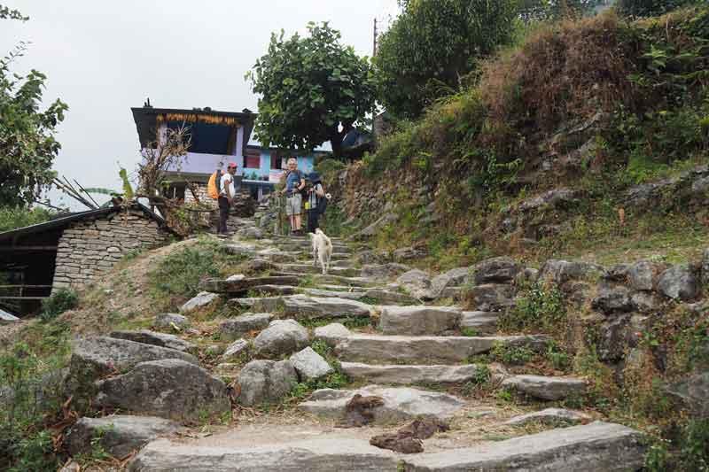 【ネパール】子連れでアナプルナベースキャンプトレッキング①:ウレリ驚異の階段!