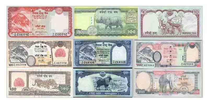 ネパールルピーは殆どが紙幣